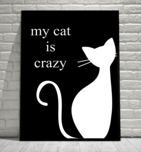 Plakat My cat is crazy w czarnej ramie, 50cmx70cm